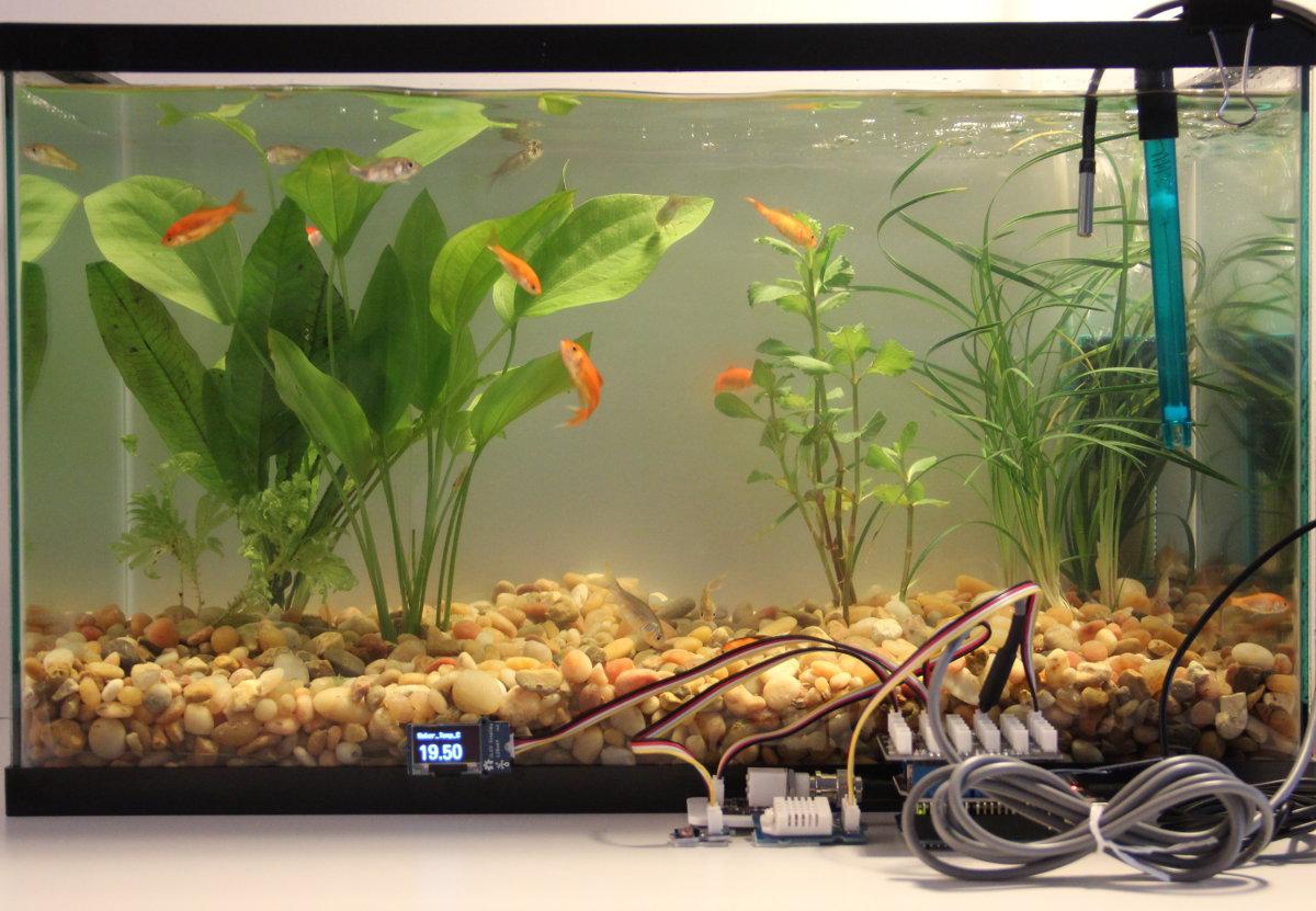 Fish Tank Monitor
